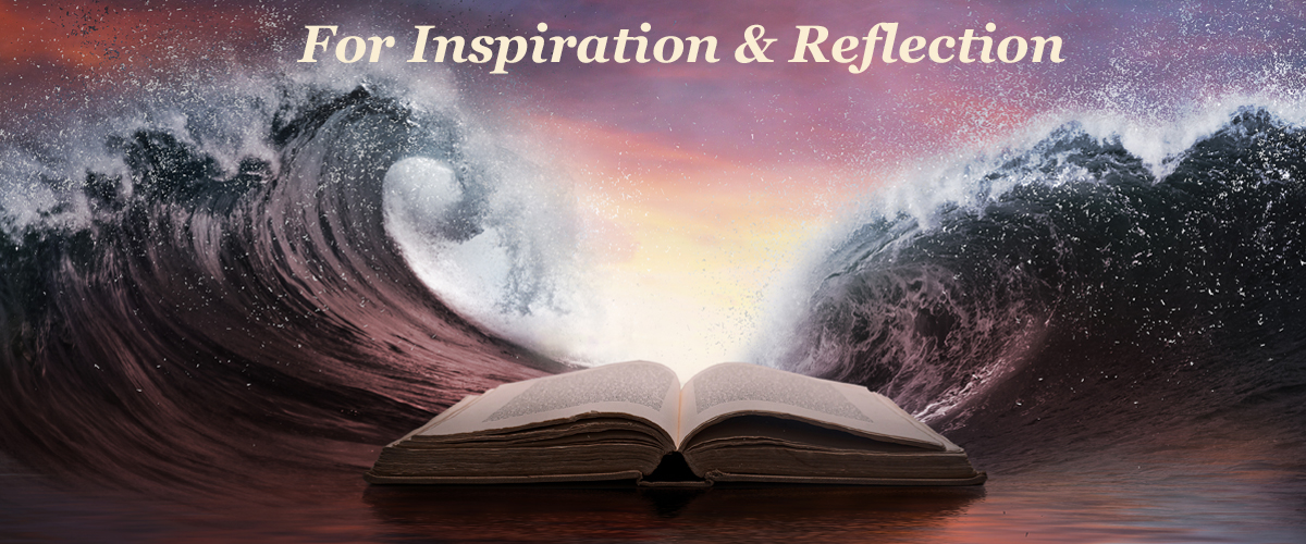 Inspiration & Reflection
